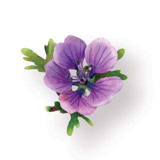 Cutter Thinlits - Flower, Hardy Geranium