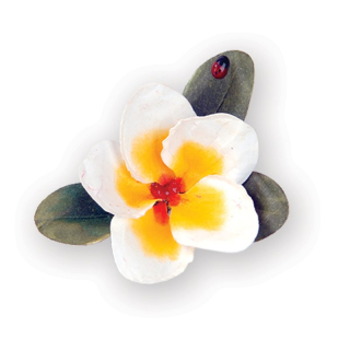 Cutter Thinlits - Flower, Plumeria