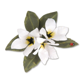 Cutter Thinlits - Flower, Stephanotis